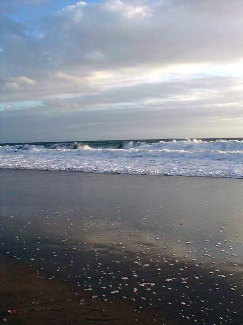 Лагуна Бич (Laguna Beach)
