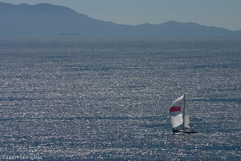 Белые паруса яхт