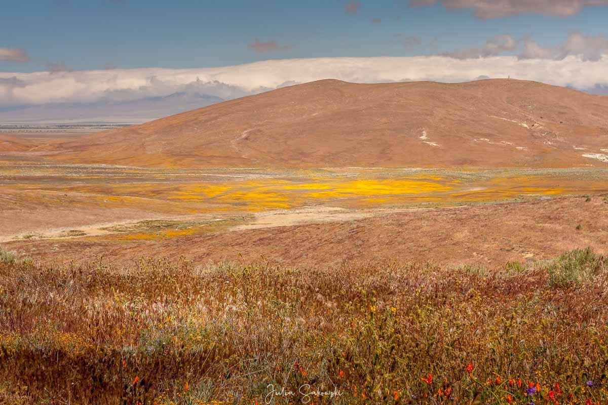 Вид на долину с Китанемук Висты (Kitanemuk Vista)