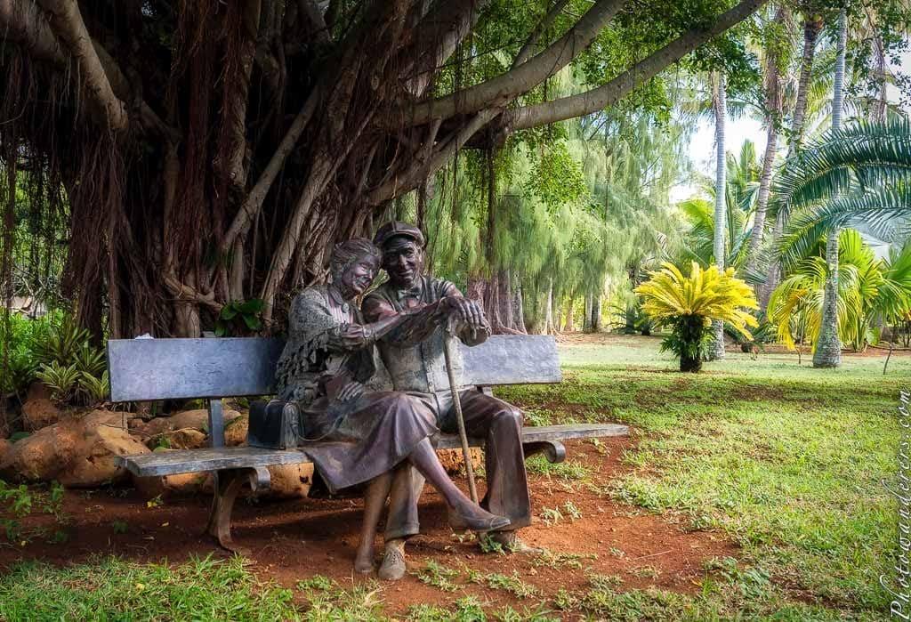 Прогулка по почти Эдему. Ботанический сад На-Айна-Кай, Кауаи, Гавайи