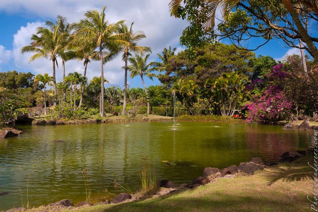 Лагуна в английском парке, На-Айна-Кай | Lagunе in Na 'Aina Kai formal Garden