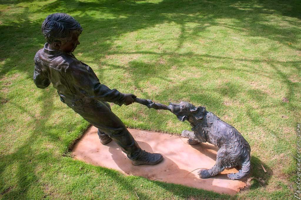 А ну-ка отними!, Ботанический сад На-Айна-Кай | Tug-of-War Game