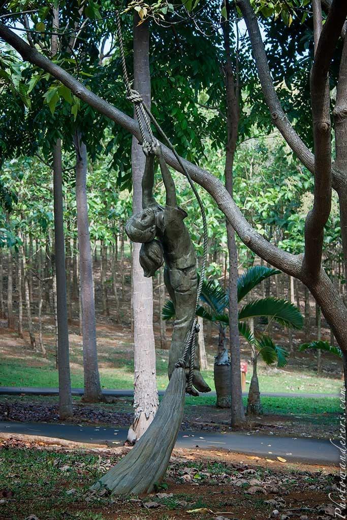 На канате | On the rope