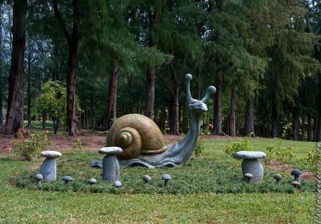 Улитка | Snail