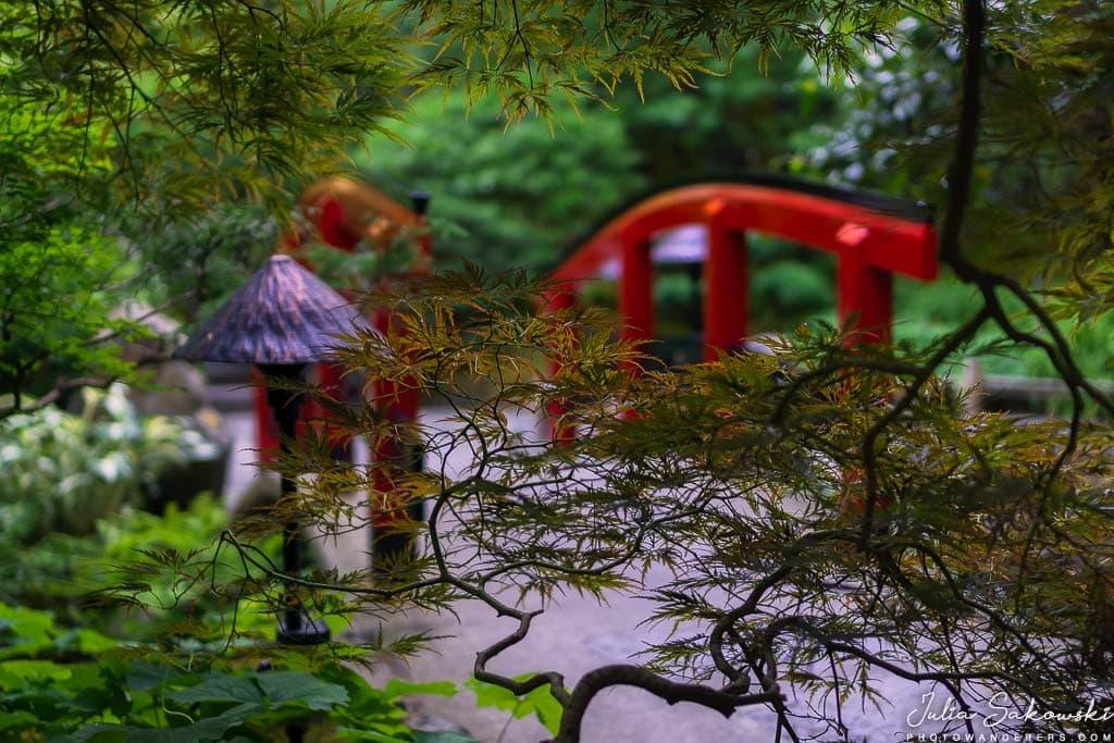 Японский этюд с красным мостом
