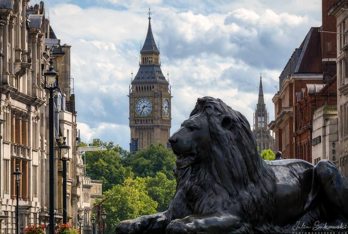 Лев на площади Трафальгар | Lion on Trafalgar square