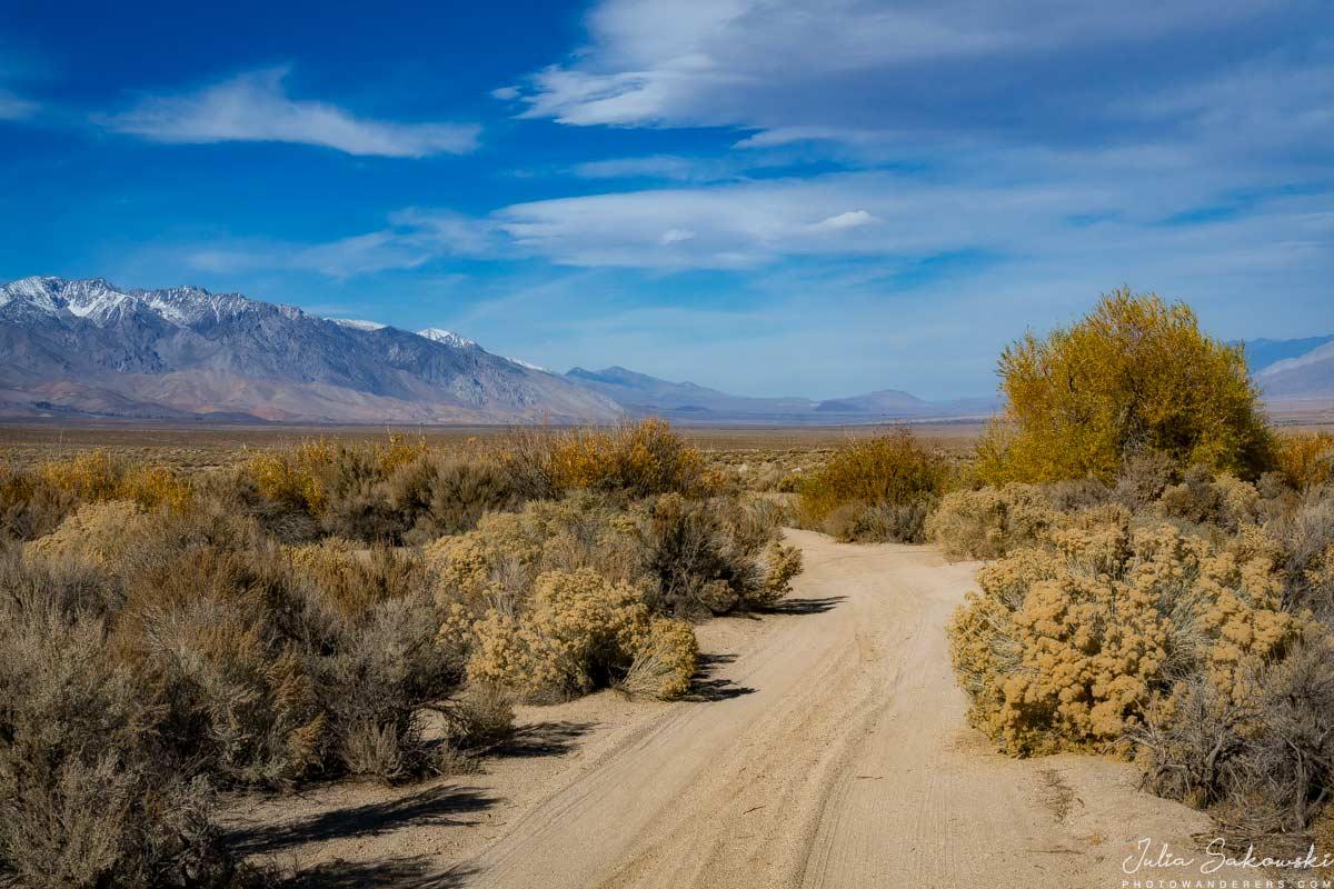 Песчаная дорога Хогбек-Крик