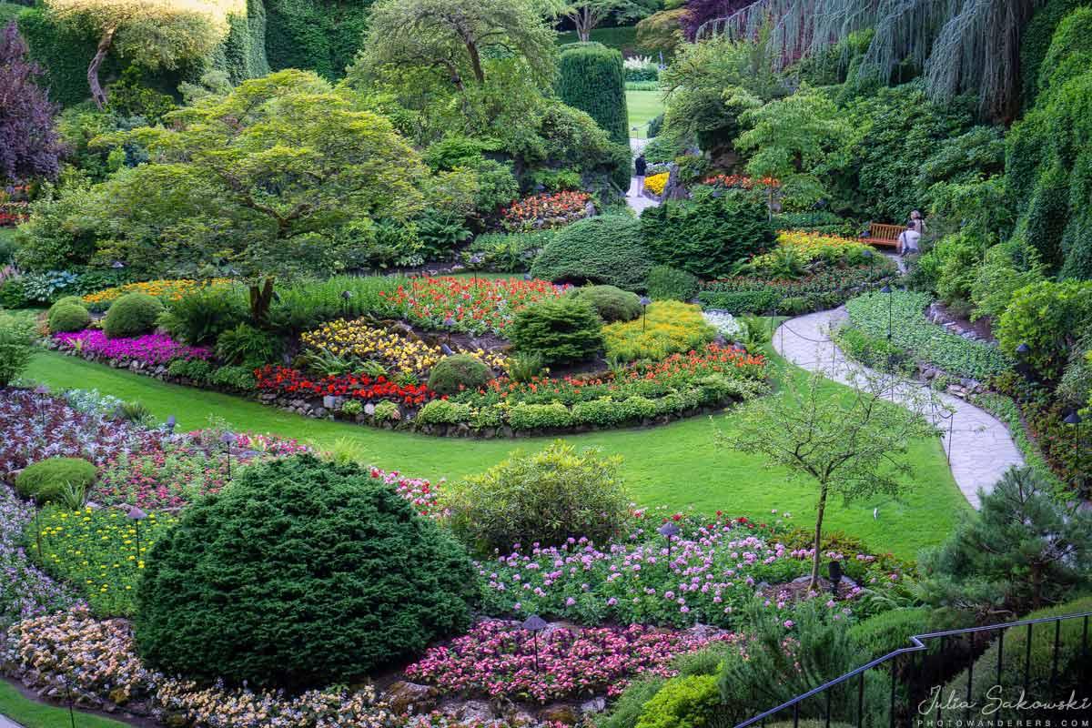 Разноцветие цветов в садах Бучардa | Colorful flowers, Butchart Gardens, Canada