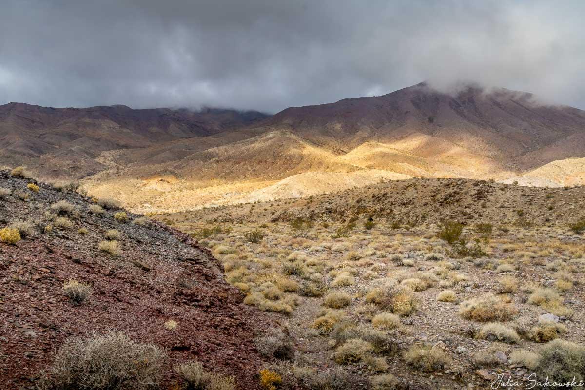 Стены каньона разошлись и показалась долина.