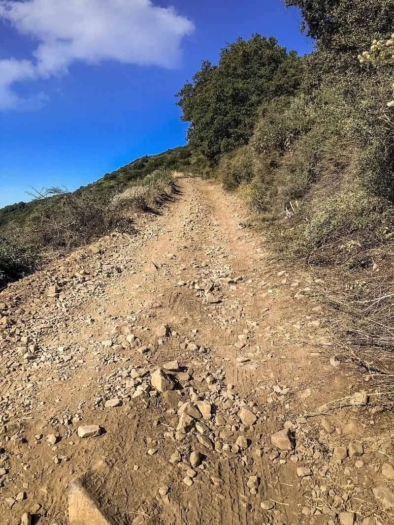Дорога на гору Сэддлбек