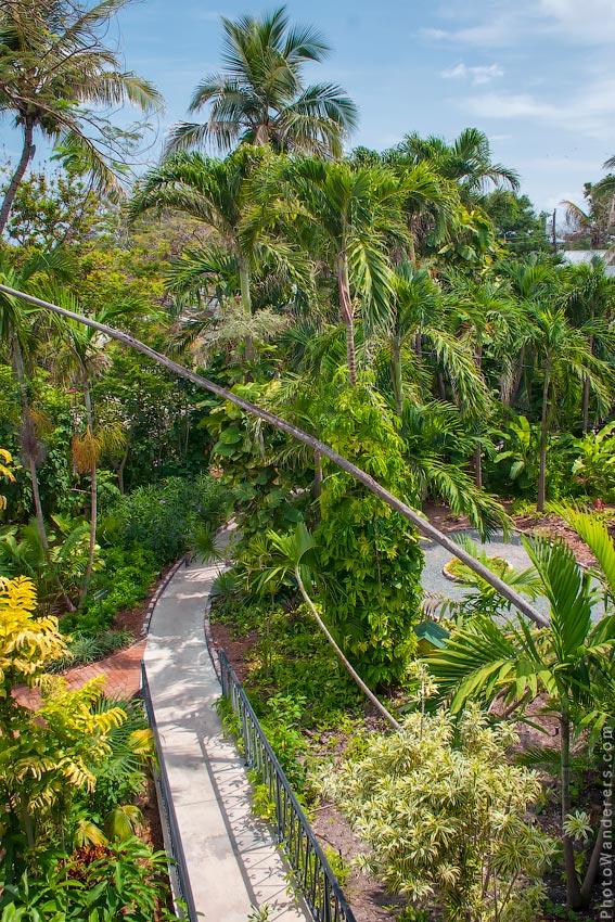 Тропичеслий сад Эрнеста Хемингуэя