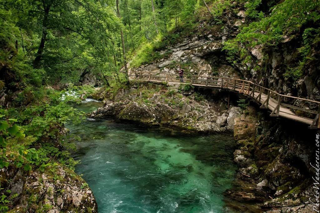 Ущелье Винтгар, Словения | Vintgar Gorge, Slovenia