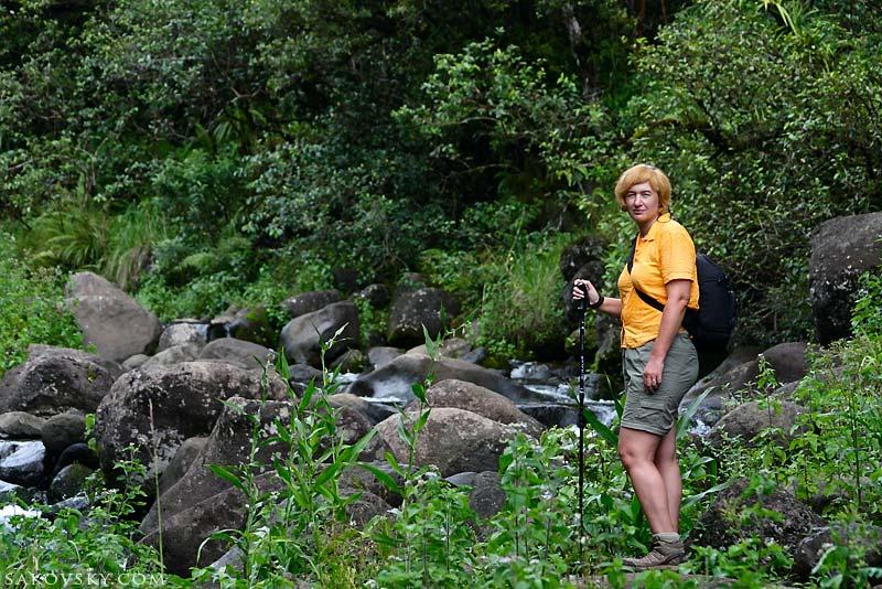 В начале пути к самому влажному месту на Земле - кратер Waialeale, Kauai