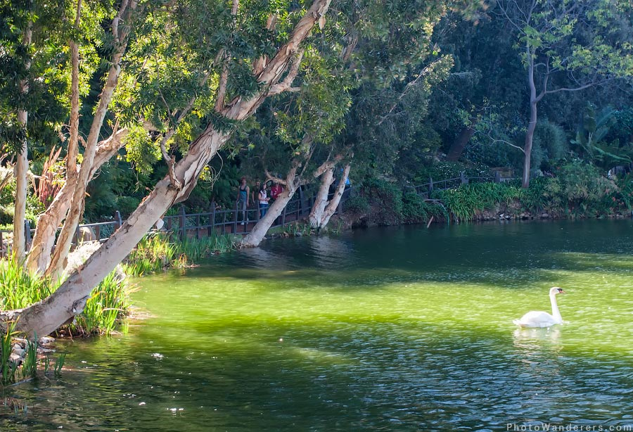 Озеро Святой Инез (Lake Santa Ynez)