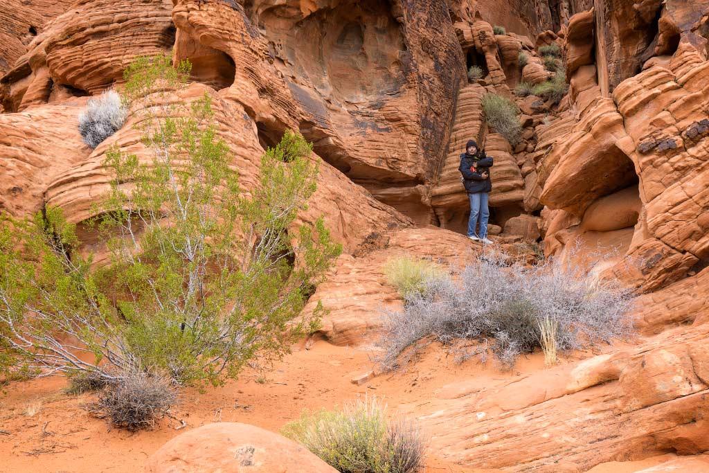 Альпинист Джек и его шерпа Алекс, Долина Огня, Невада | Jack mountaineer and his Sherpa Alex, Valley of Fire, Nevada