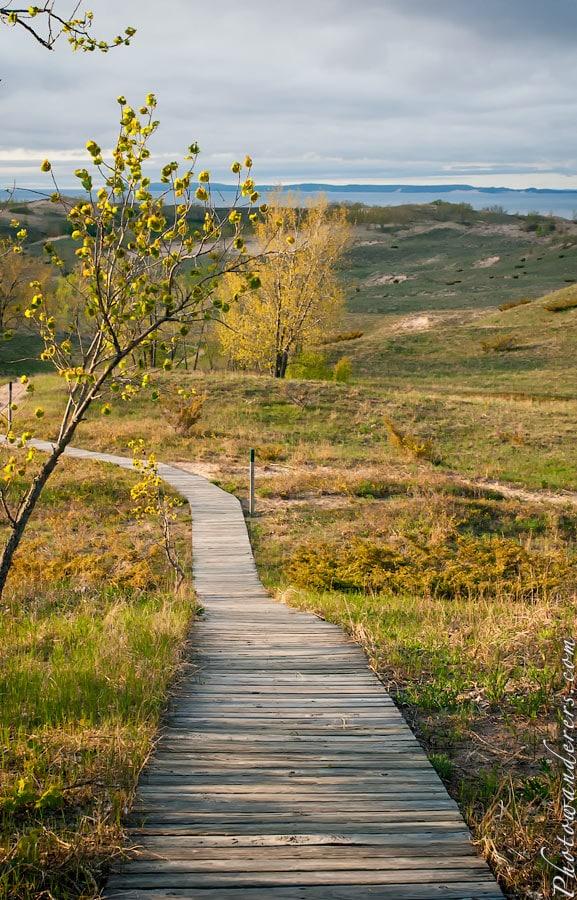 Тополиная тропа, Парк Дюны Спящего Медведя | Cottonwood Trail