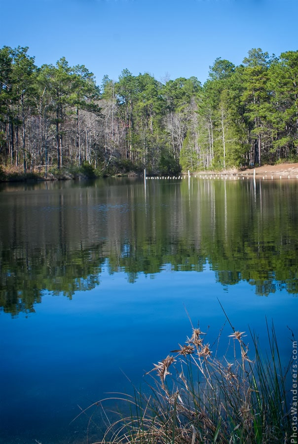 Лесное озеро по дороге в Таллахасси, Флорида
