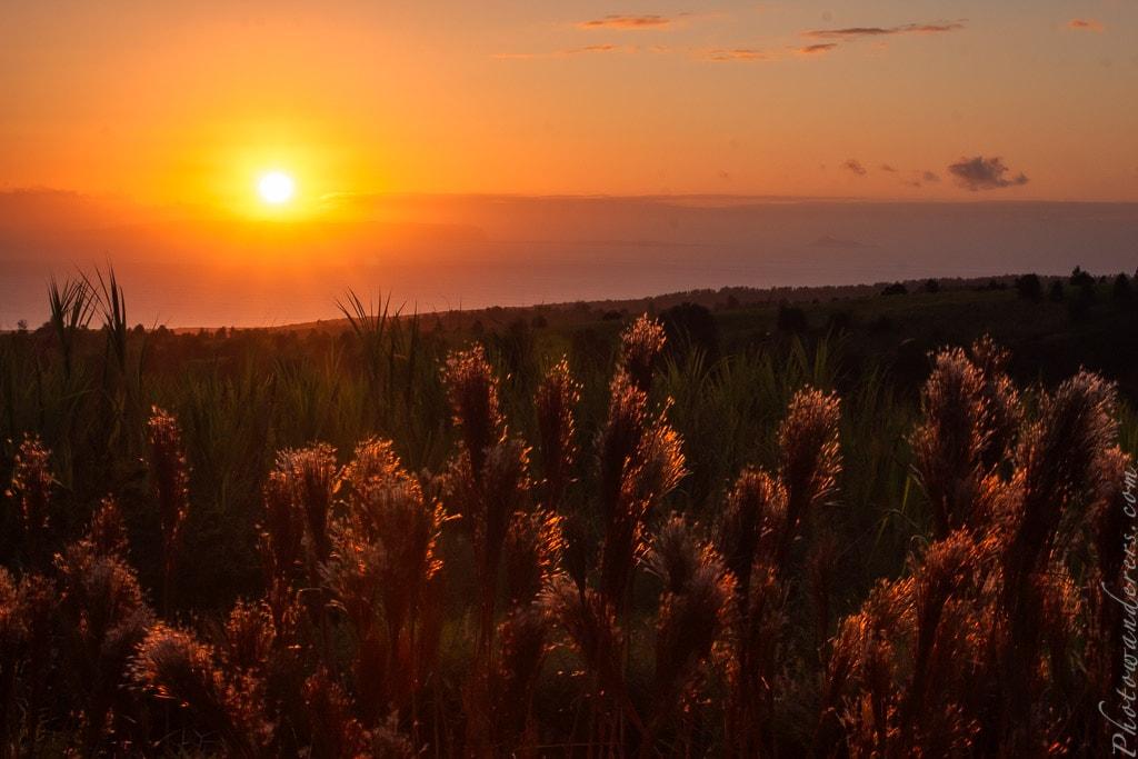 Закат с дороги Ваимеа Каньон, Кауаи, Гавайи | Sunset on Waimea Canyon Road, Kauai, Hawaii
