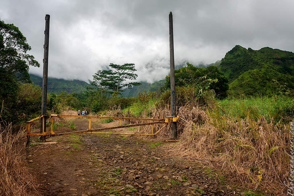 Ворота в Парк Юрского периода, Кауаи, Гавайи | Jurassic Park Gate, Kauai, Hawaii