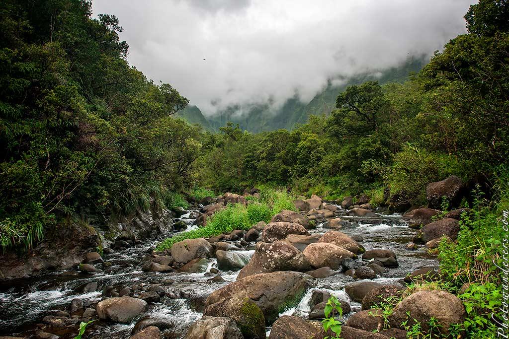 Истоки реки Ваилуа, Кауаи, Гавайи | Wailua River headspring, Kauai, Hawaii